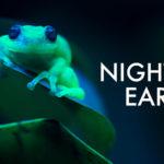 night-on-earth